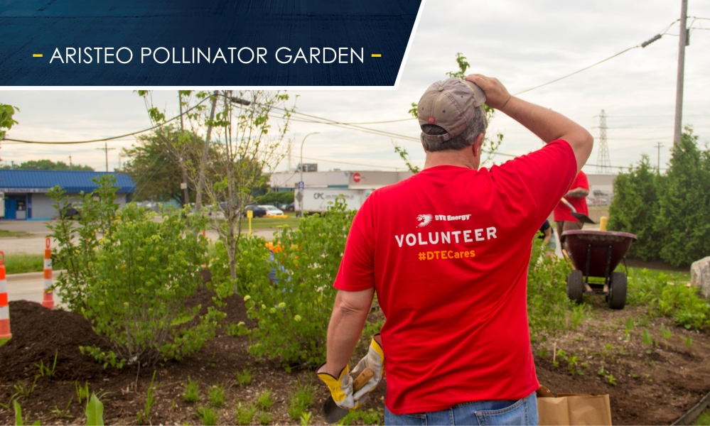 Aristeo volunteers dug up and planted a pollinator garden designed with native plant species and hope to have it certified by the Wildlife Habitat Council in Fall of 2018.
