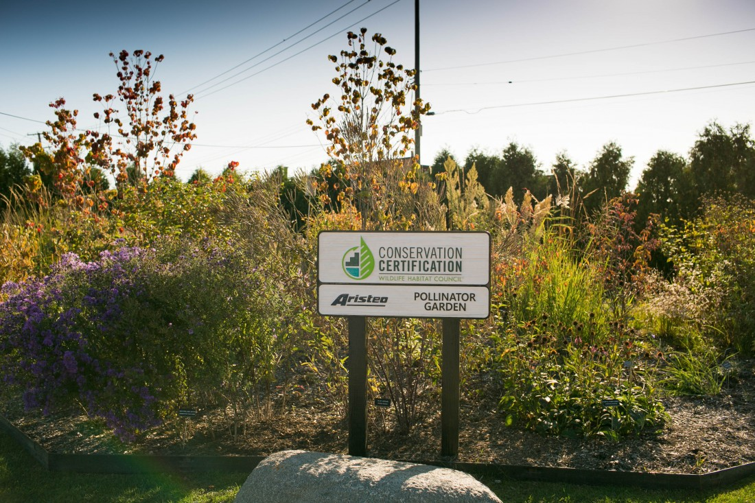 Aristeo's Pollinator Garden Achieves Wildlife Habitat Council Conservation Certification